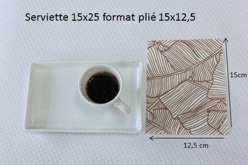 serviette pliée en 2 15x25cm
